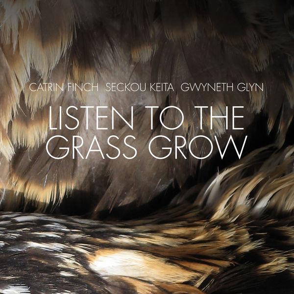 Catrin Finch - Listen to the Grass Grow
