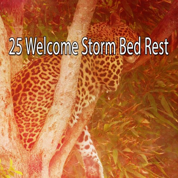 Rain Sounds - 25 Welcome Storm Bed Rest
