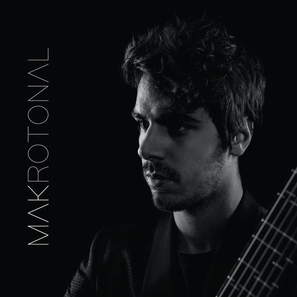Mak Grgić - Makrotonal Guitar