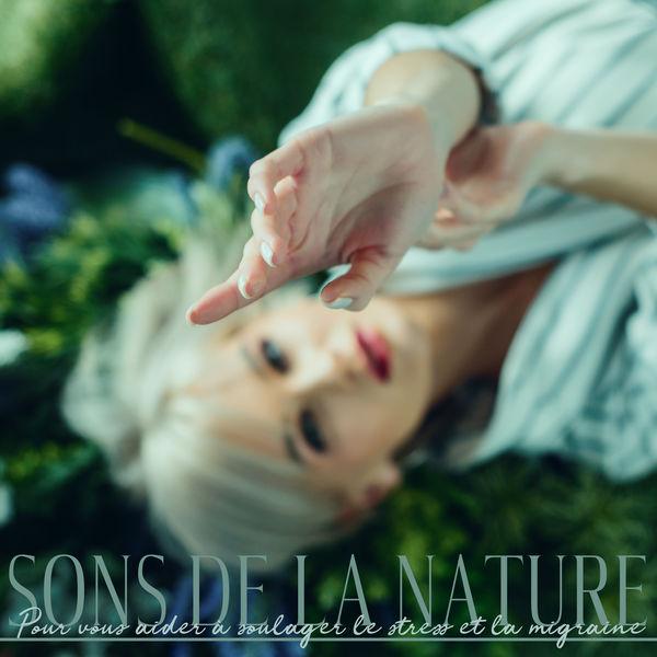 Zen ambiance d'eau calme - Sons de la nature