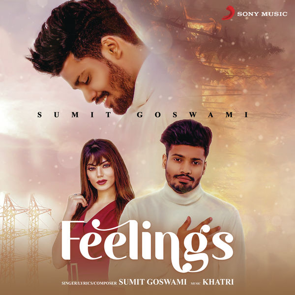 Sumit Goswami - Feelings