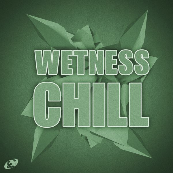 Various Artists - Wetness Chill, Vol.6