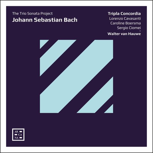 Walter van Hauwe  - Bach: The Trio Sonata Project