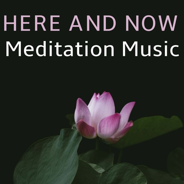 Indian Music, Musica Hindu, World Music, Musique Indienne, Musique Hindoue, Spa & Spa, Relaxation, Mindfulness Meditation Music Spa Maestro, Zen Médit - Here And Now (Meditation Music)
