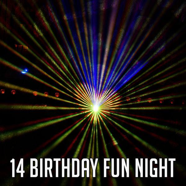 Happy Birthday Party Crew - 14 Birthday Fun Night