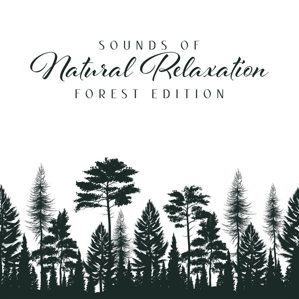 Odyssey for Relax Music Universe - Sounds of Natural Relaxation: Forest Edition