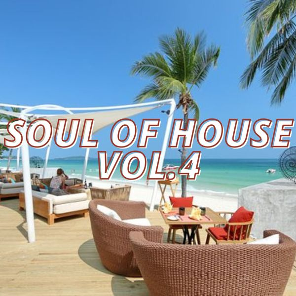 Various Artists - Soul of House Vol.4