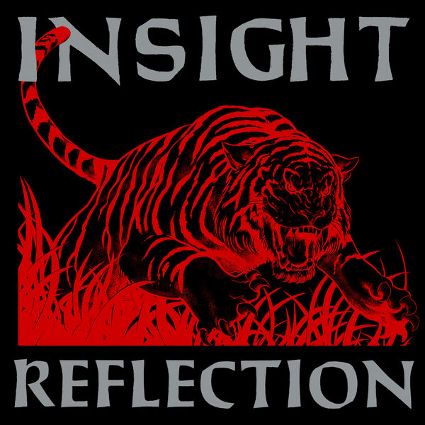 Insight - Reflection