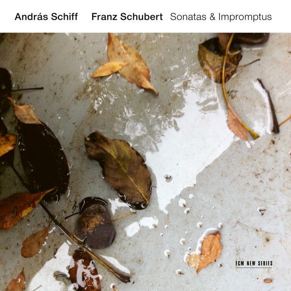 Andras Schiff - Schubert : Sonatas & Impromptus