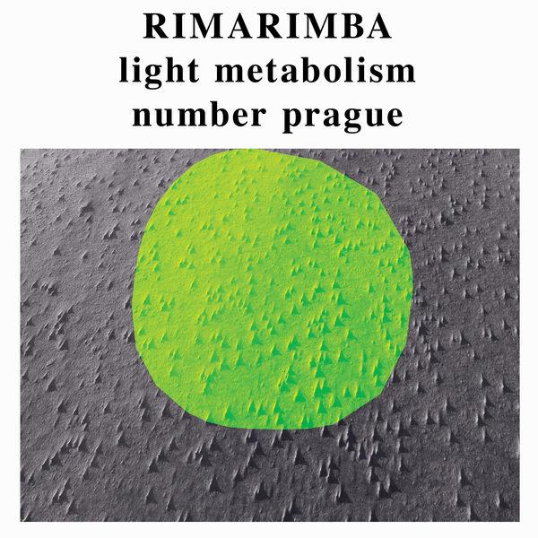 Rimarimba - Egg Foo Young