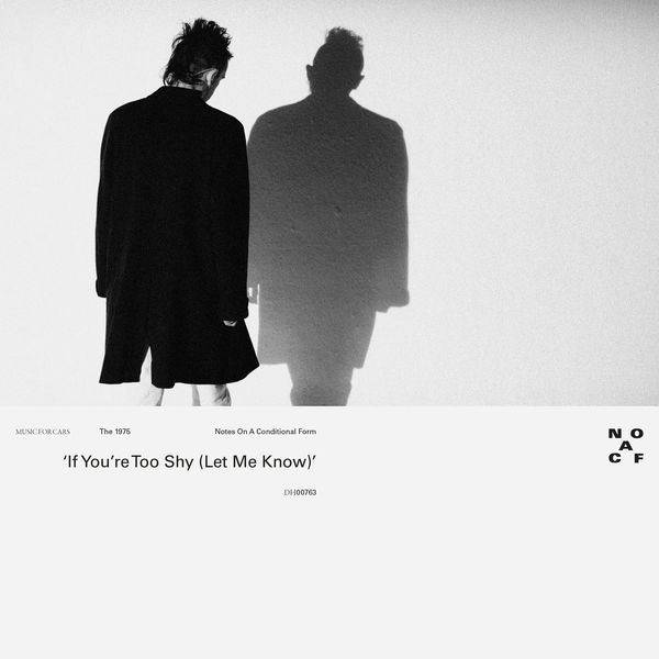 The 1975 - If You're Too Shy (Let Me Know)