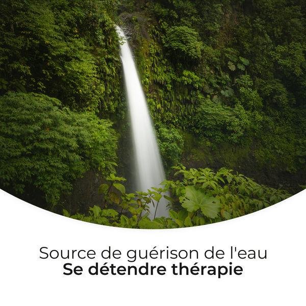 Ensemble de Musique Zen Relaxante - Source de guérison de l'eau: Se détendre thérapie - Méditation profonde, Cure d'insomnie, Yoga du matin, Musique spa