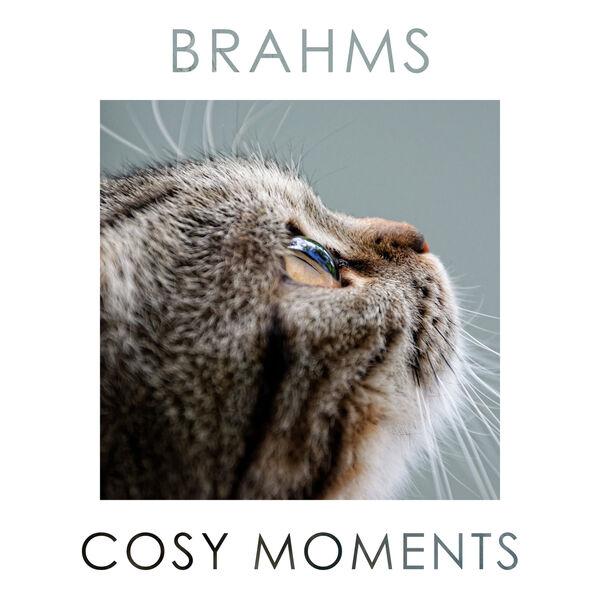 Johannes Brahms Brahms Cosy Moments