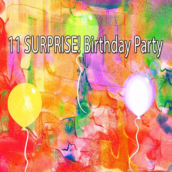 Happy Birthday - 11 Surprise! Birthday Party