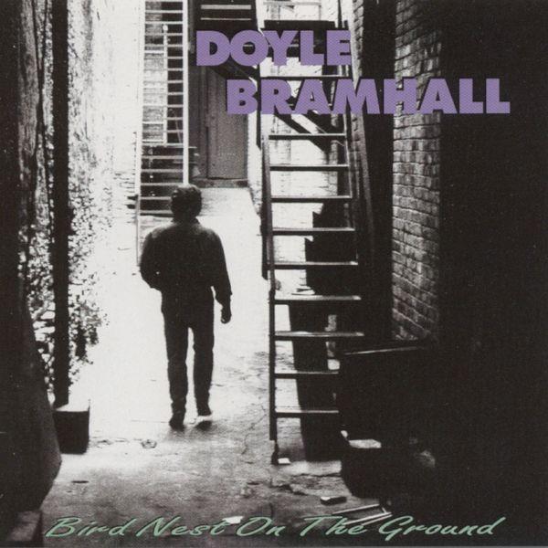 Doyle Bramhall II - Bird Nest on the Ground
