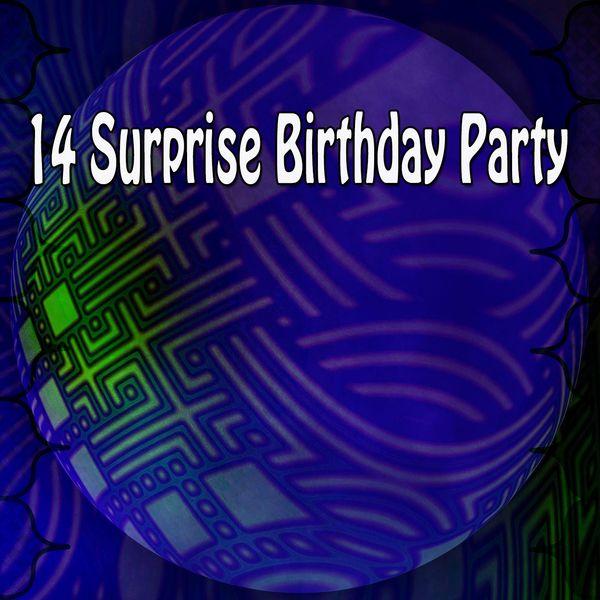 Happy Birthday Band - 14 Surprise Birthday Party
