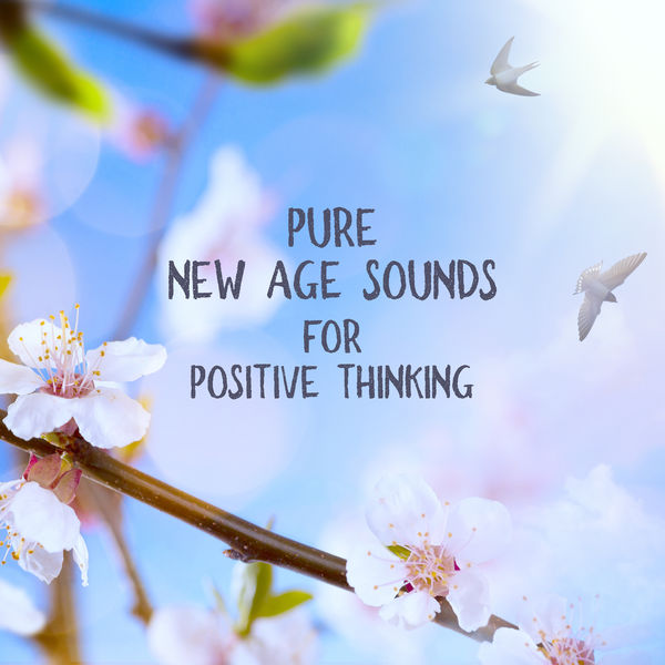Relaxing Zen Music Ensemble - Pure New Age Sounds for Positive Thinking