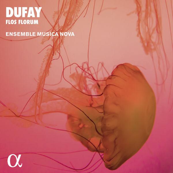 Ensemble Musica Nova - Dufay: Flos Florum. Motets, Hymns, Antiphons (Alpha Collection)