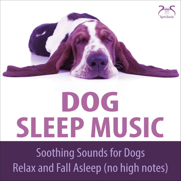 Dog Music TA - Dog Sleep Music - Soothing Sounds for dogs, relax and fall asleep (no high notes)
