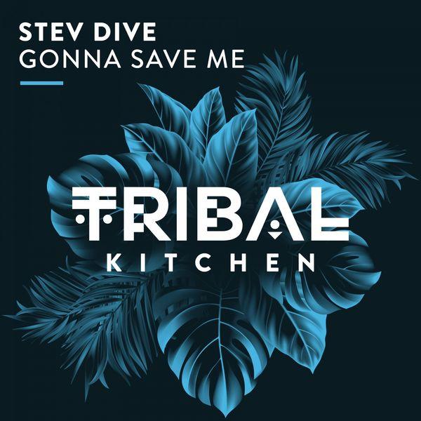 Stev Dive Gonna Save Me