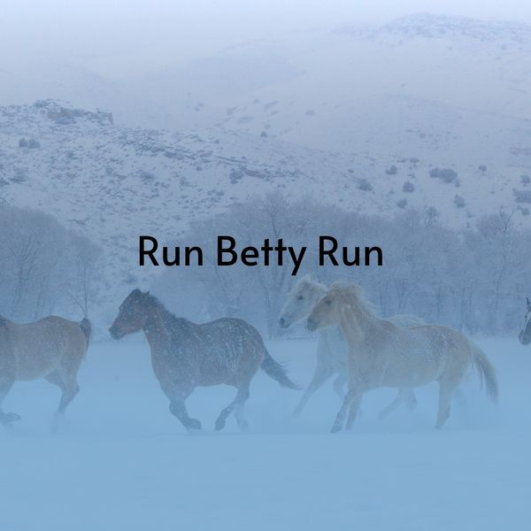 Various Artists - Run Betty Run