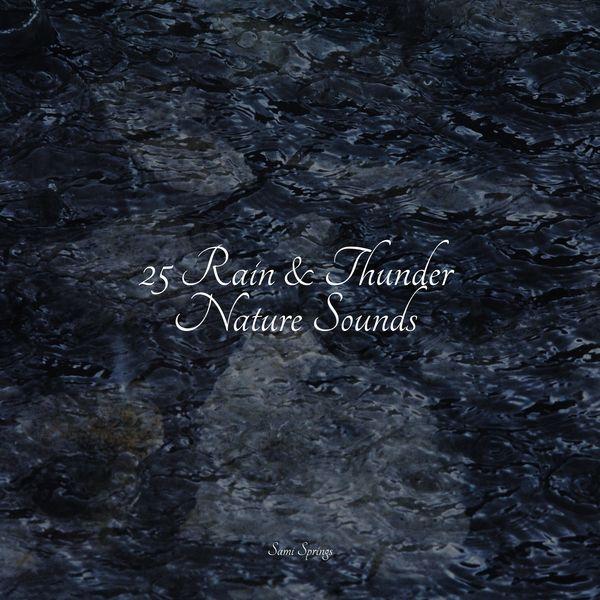 Sonidos De Lluvia y Tormentas|25 Rain & Thunder Nature Sounds