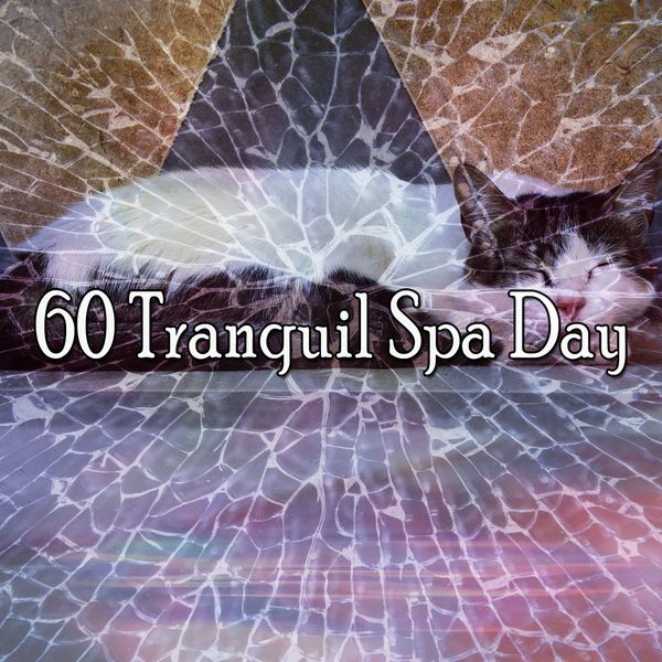Musica para Dormir Dream House - 60 Tranquil Spa Day