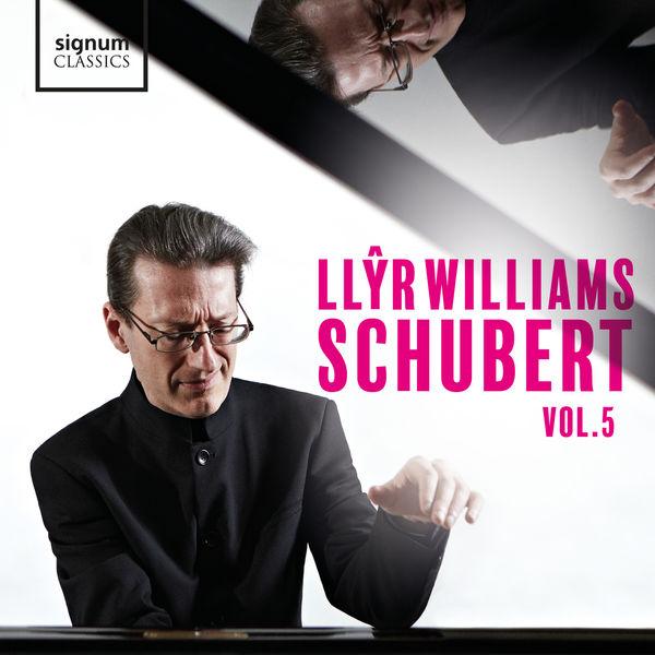Llyr Williams - Sonata in G Major, Op. 78, D. 894: III. Menuetto: Allegro
