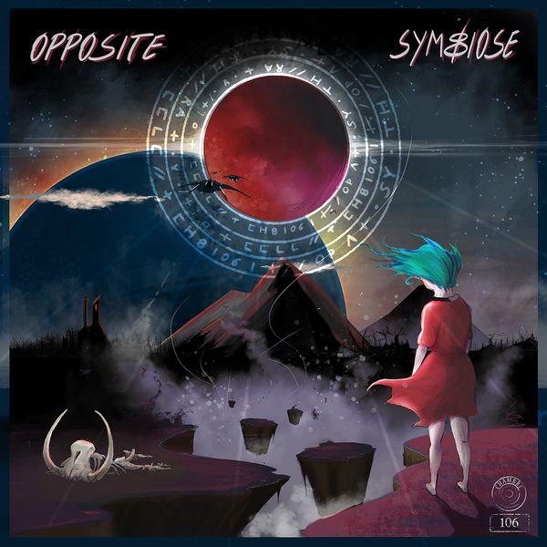 Chambre 106 - Opposite symbiose