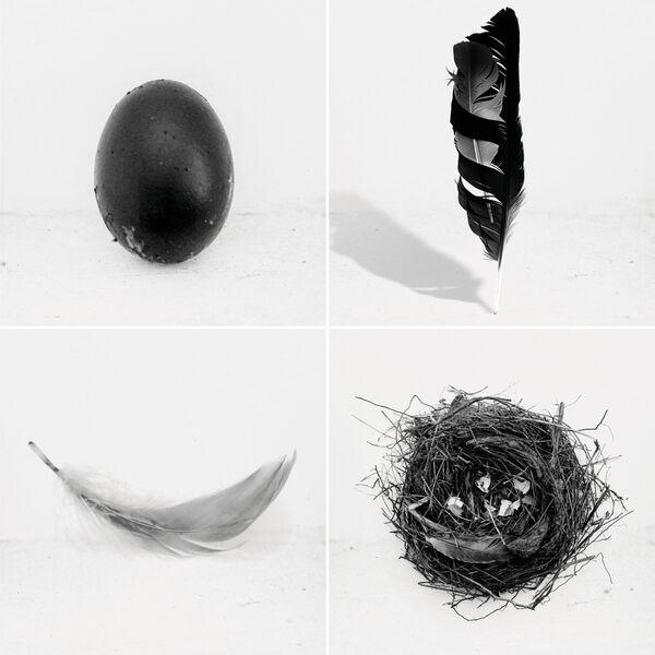 Lady Blackbird The Singles