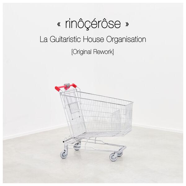 Rinôcérôse - La Guitaristic House Organisation (original rework)