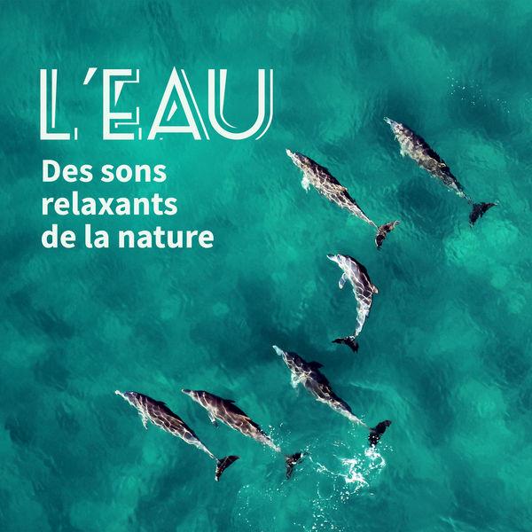 Sérénité Océan - L'eau