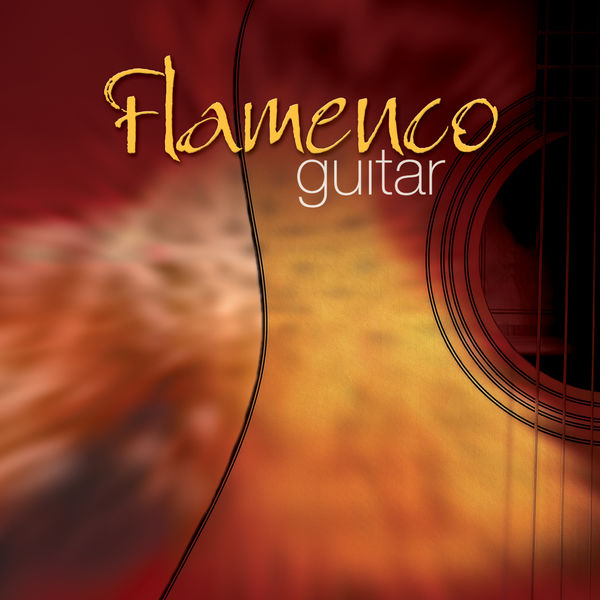 The Sign Posters - Flamenco Guitar