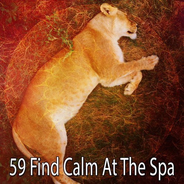 Relaxing With Sounds of Nature and Spa Music Natural White Noise Sound Therapy - 59 Find Calm at the Spa