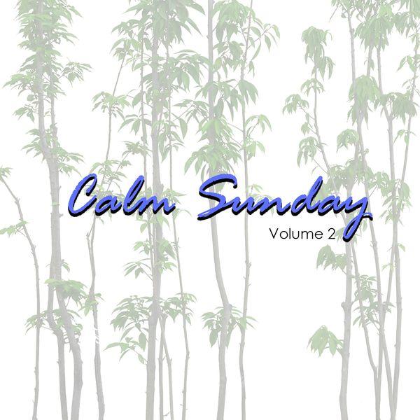 Various Artists - Calm Sunday