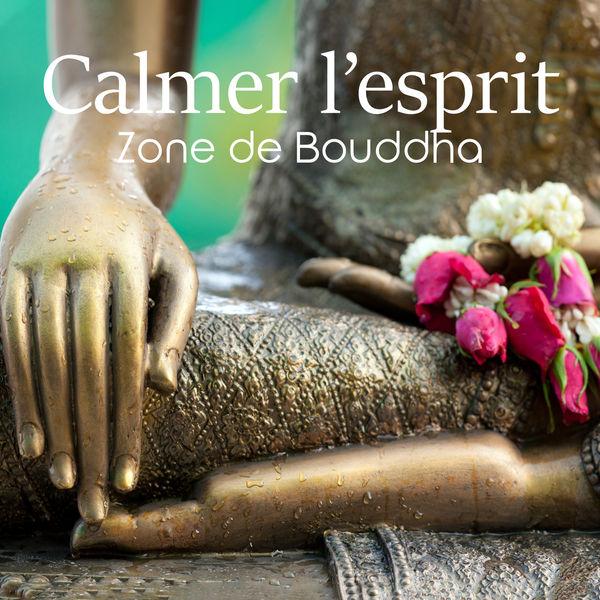 Ensemble de Musique Zen Relaxante - Calmer l'esprit: Zone de Bouddha, Musique de méditation, Jardin japonais, Exercices respiratoires