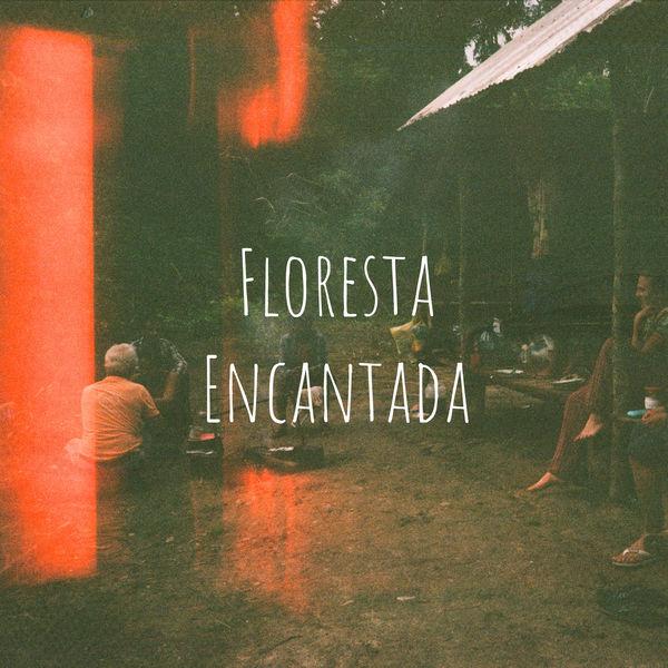 FR4NCESCO - Floresta Encantada