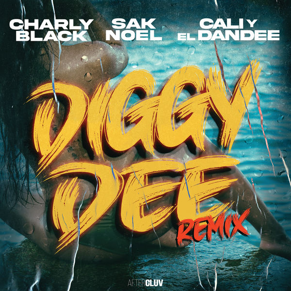 Charly Black - Diggy Dee