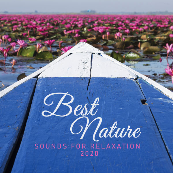 """Relaxing Music Therapy - """"Best Nature Sounds for Relaxation 2020"""""""