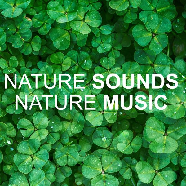 Nature Sounds Nature Music - Nature Sounds Nature Music