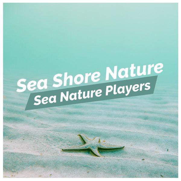 Sea Nature Players - Sea Shore Nature