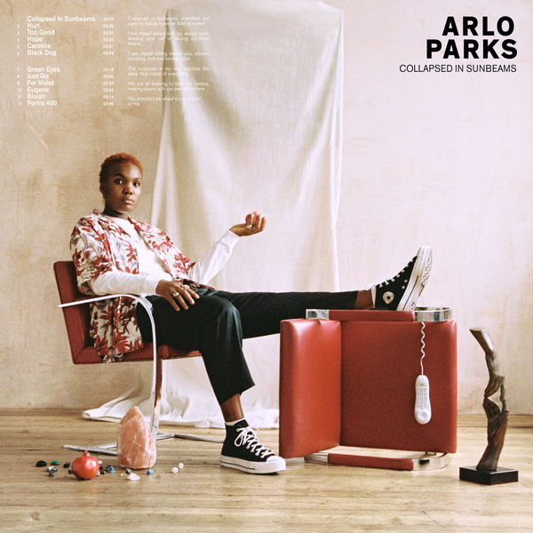 Arlo Parks|Collapsed In Sunbeams