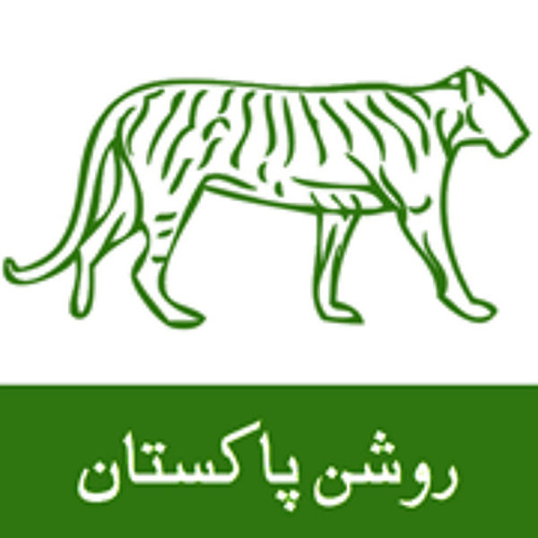 pml n song bas sher mp3