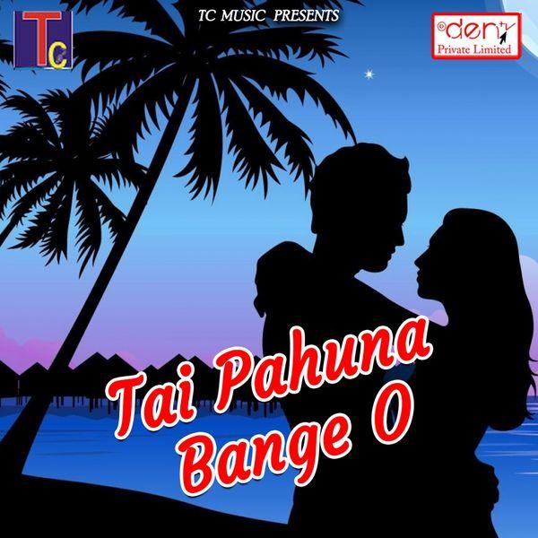 Various Artists - Tai Pahuna Bange O