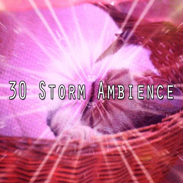 Rain Sounds - 30 Storm Ambience