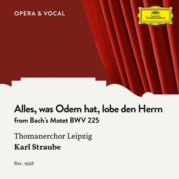 Thomanerchor Leipzig - Bach: Alles, was Odem hat, lobe den Herrn - Finale Fugue, BWV 225