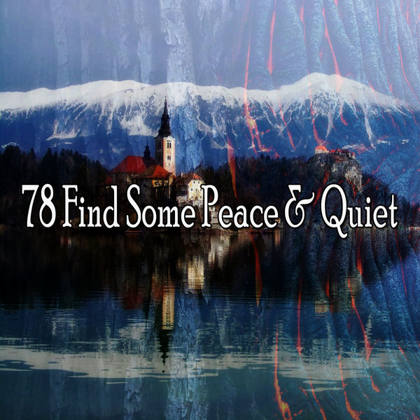 Ocean Sounds Collection - 78 Find Some Peace & Quiet