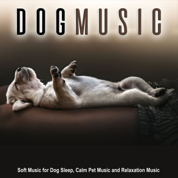 Dog Music - Dog Music: Soft Music for Dog Sleep, Calm Pet Music and Relaxation Music