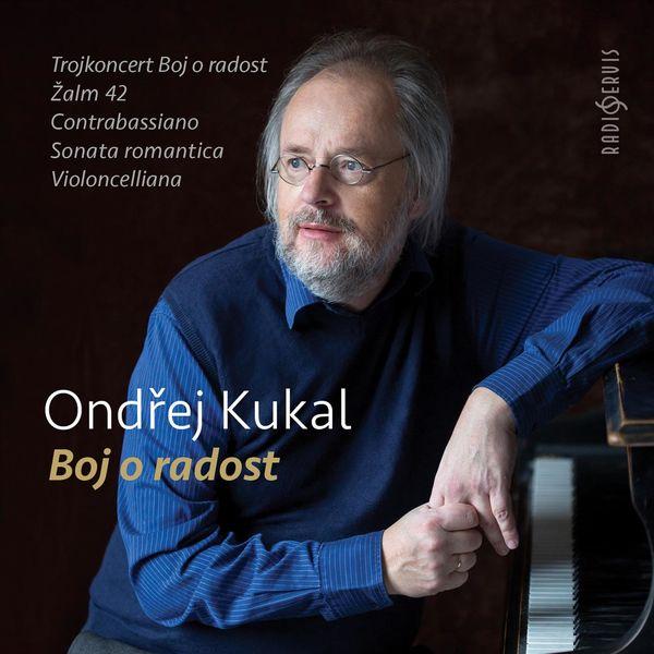 Kalliopé Trio Prague - Ondřej Kukal: Struggle for Joy