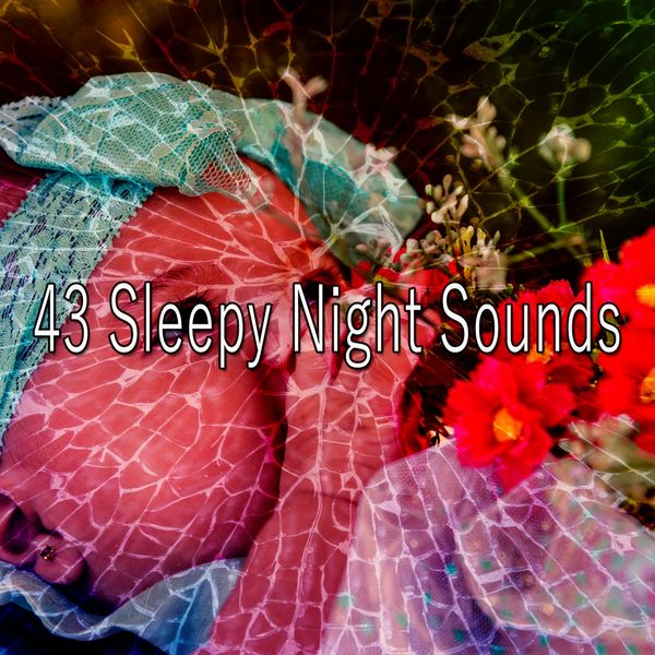 Calming Sounds - 43 Sleepy Night Sounds
